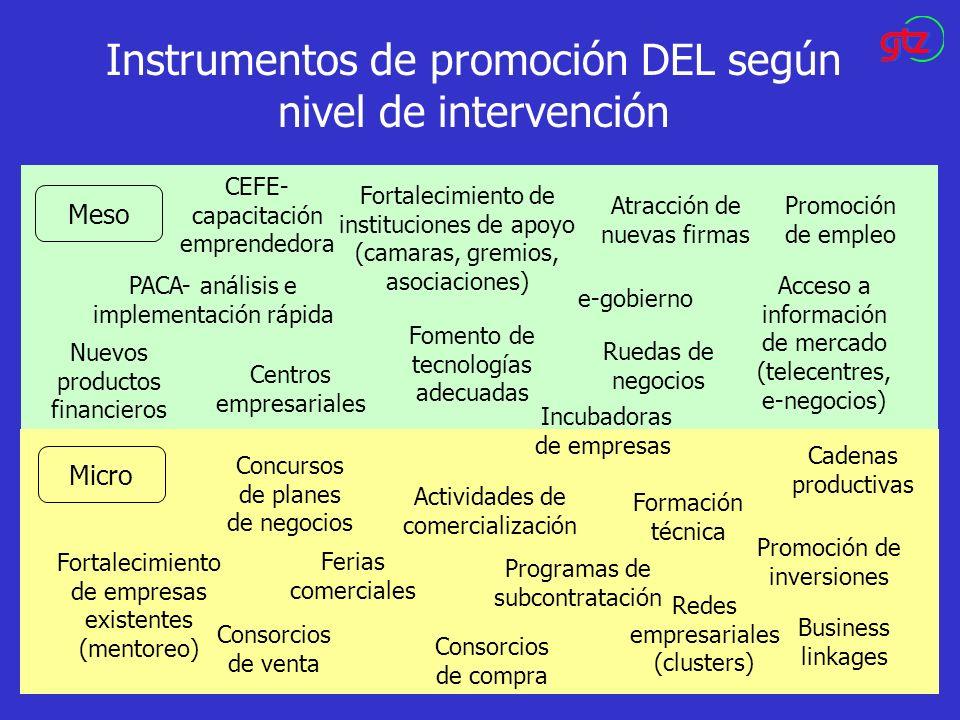 Instrumentos de promoción DEL según nivel de intervención Meso Micro Atracción de nuevas firmas e-gobierno CEFE- capacitación emprendedora Fomento de