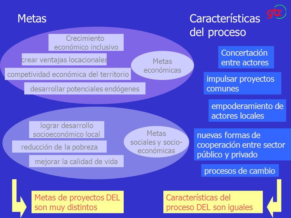 MetasCaracterísticas del proceso Crecimiento económico inclusivo crear ventajas locacionales competividad económica del territorio desarrollar potenci