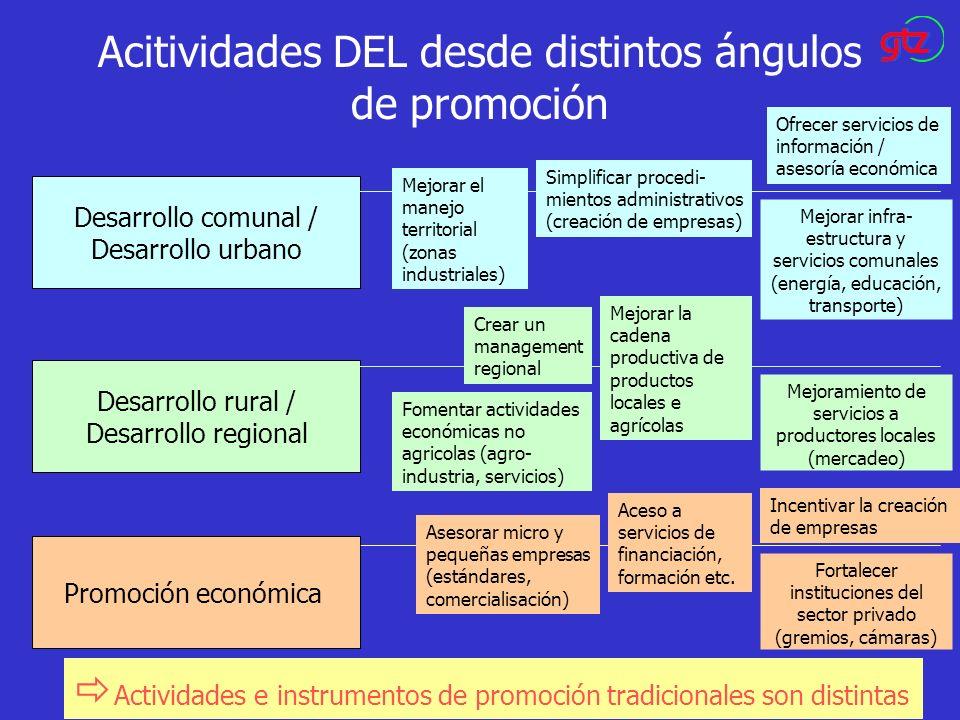 Acitividades DEL desde distintos ángulos de promoción Desarrollo comunal / Desarrollo urbano Desarrollo rural / Desarrollo regional Promoción económic