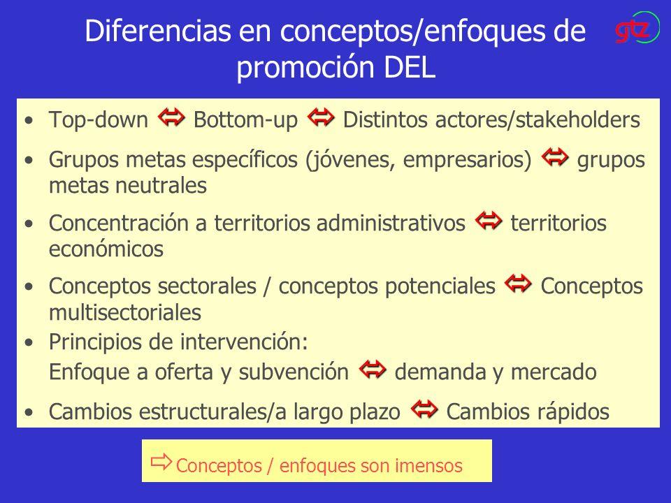 Diferencias en conceptos/enfoques de promoción DEL Top-down Bottom-up Distintos actores/stakeholders Grupos metas específicos (jóvenes, empresarios) g