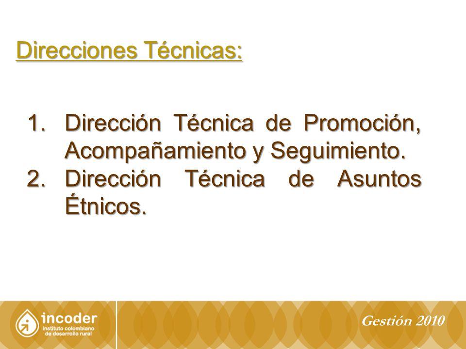 1.Dirección Técnica de Promoción, Acompañamiento y Seguimiento.