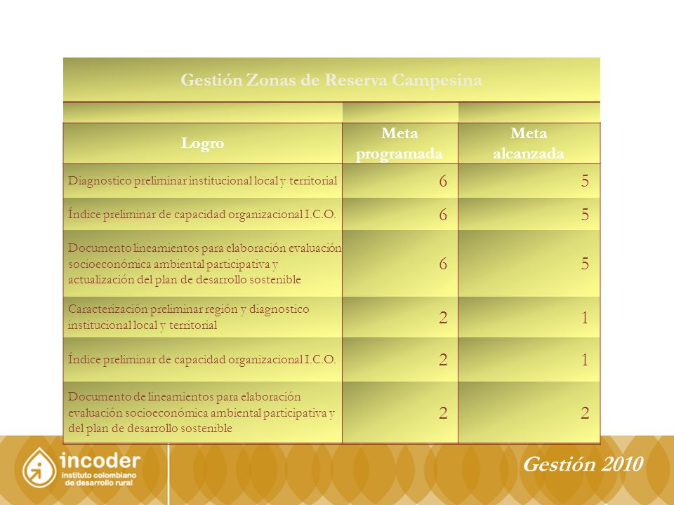 Gestión 2010 Gestión Zonas de Reserva Campesina Logro Meta programada Meta alcanzada Diagnostico preliminar institucional local y territorial 65 Índice preliminar de capacidad organizacional I.C.O.