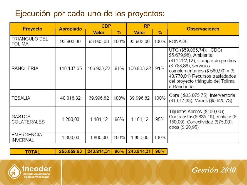 Ejecución por cada uno de los proyectos: Gestión 2010