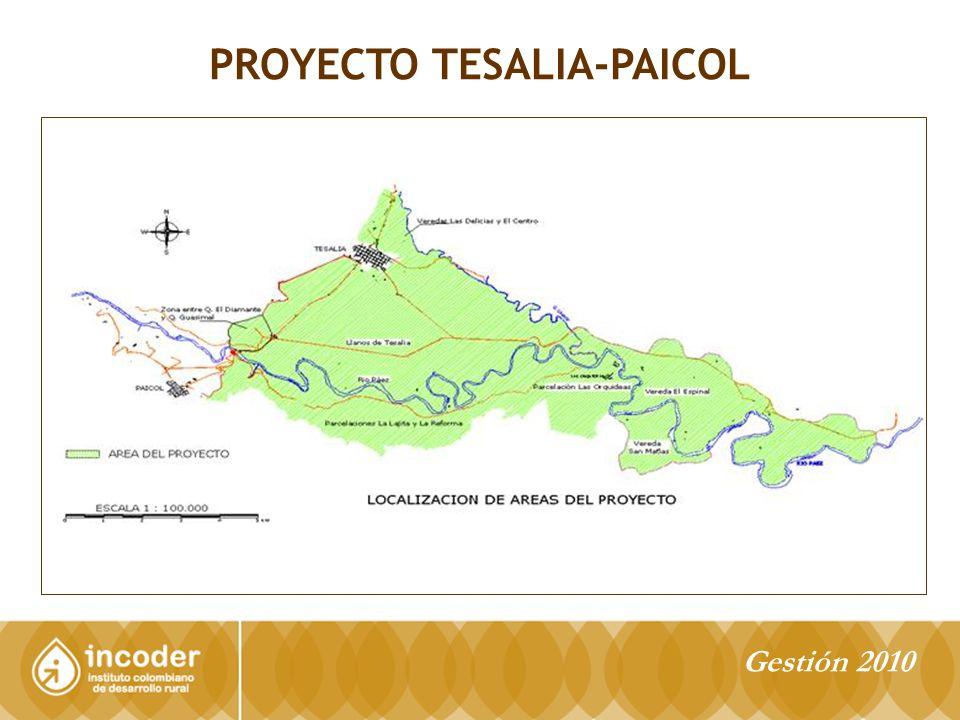PROYECTO TESALIA-PAICOL Gestión 2010