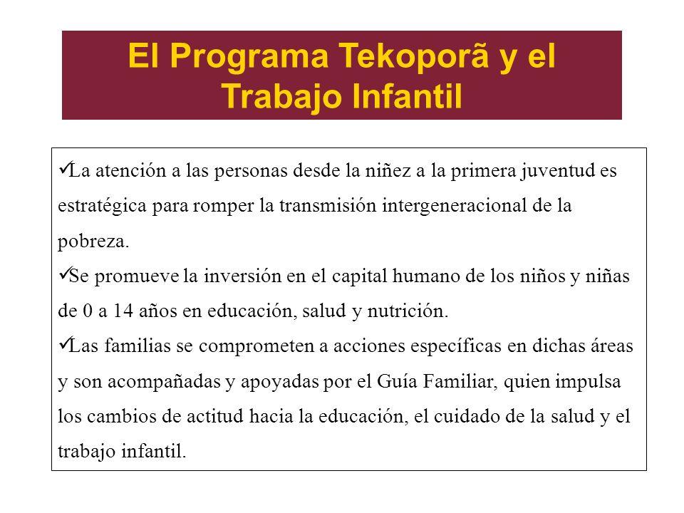 El Programa Tekoporã y el Trabajo Infantil La atención a las personas desde la niñez a la primera juventud es estratégica para romper la transmisión i