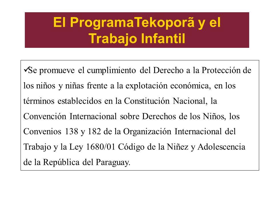 El ProgramaTekoporã y el Trabajo Infantil Se promueve el cumplimiento del Derecho a la Protección de los niños y niñas frente a la explotación económica, en los términos establecidos en la Constitución Nacional, la Convención Internacional sobre Derechos de los Niños, los Convenios 138 y 182 de la Organización Internacional del Trabajo y la Ley 1680/01 Código de la Niñez y Adolescencia de la República del Paraguay.