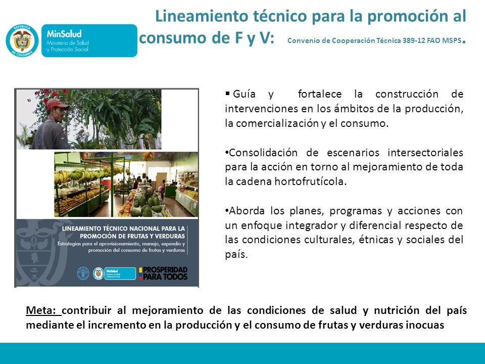 Guía y fortalece la construcción de intervenciones en los ámbitos de la producción, la comercialización y el consumo. Consolidación de escenarios inte