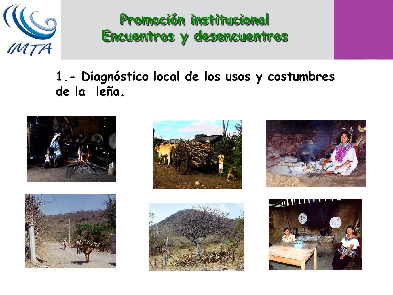 1.- Diagnóstico local de los usos y costumbres de la leña. Promoción institucional Encuentros y desencuentros Promoción institucional Encuentros y des
