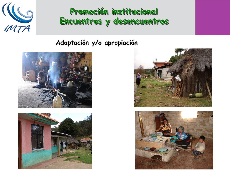 Adaptación y/o apropiación Promoción institucional Encuentros y desencuentros Promoción institucional Encuentros y desencuentros