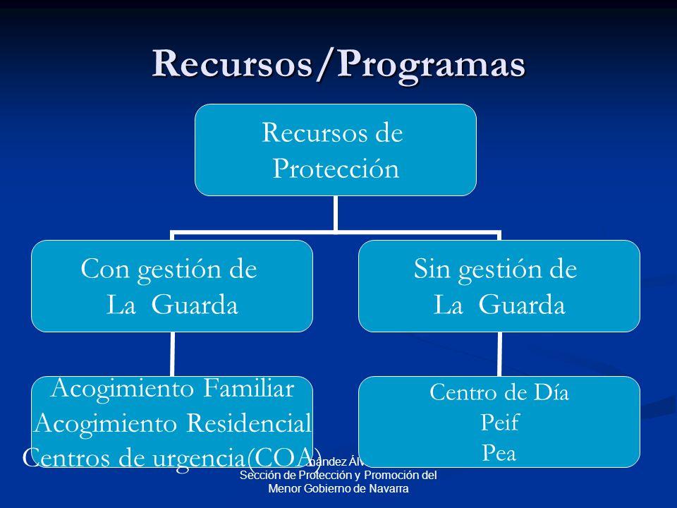 Fernando Fernández Álvarez Jefe de la Sección de Protección y Promoción del Menor Gobierno de Navarra Recursos/Programas Recursos de Protección Con gestión de La Guarda Acogimiento Familiar Acogimiento Residencial Centros de urgencia(COA) Sin gestión de La Guarda Centro de Día Peif Pea