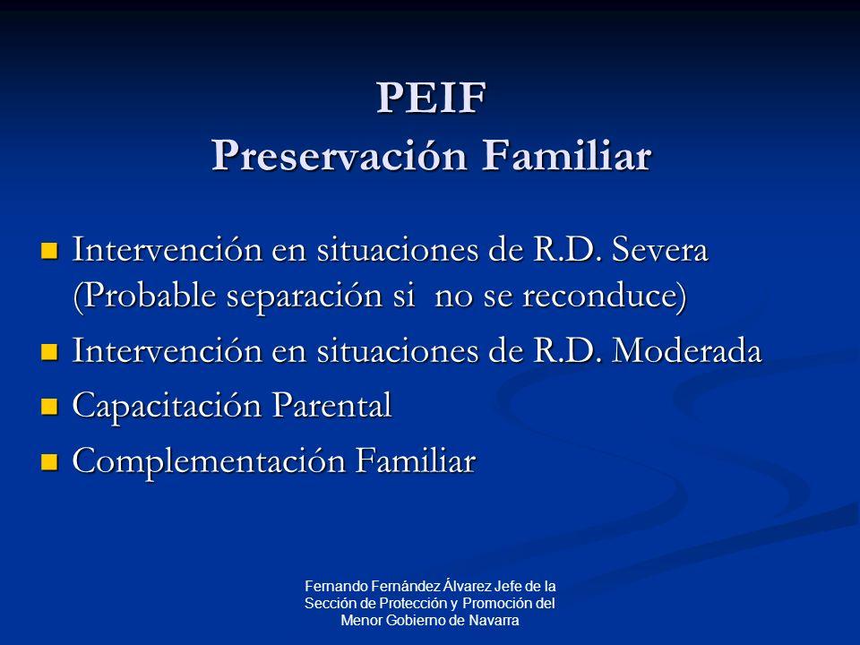 Fernando Fernández Álvarez Jefe de la Sección de Protección y Promoción del Menor Gobierno de Navarra PEIF Preservación Familiar Intervención en situaciones de R.D.