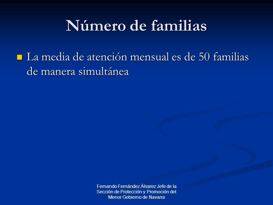 Fernando Fernández Álvarez Jefe de la Sección de Protección y Promoción del Menor Gobierno de Navarra Número de familias La media de atención mensual es de 50 familias de manera simultánea La media de atención mensual es de 50 familias de manera simultánea