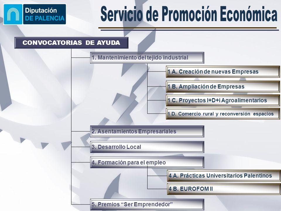 Creación de nuevas actividades empresariales con la generación de puestos de trabajo estables.