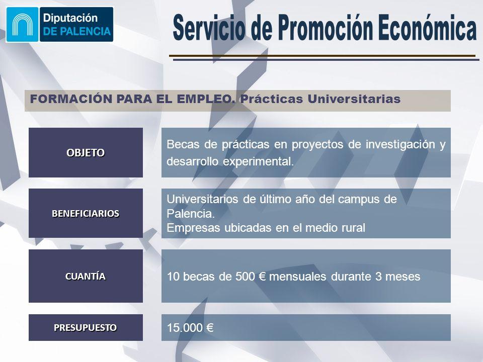 FORMACIÓN PARA EL EMPLEO: EUROFOM II Mejora de la empleabilidad de los universitarios palentinos y fomentar el aprendizaje de idiomas.