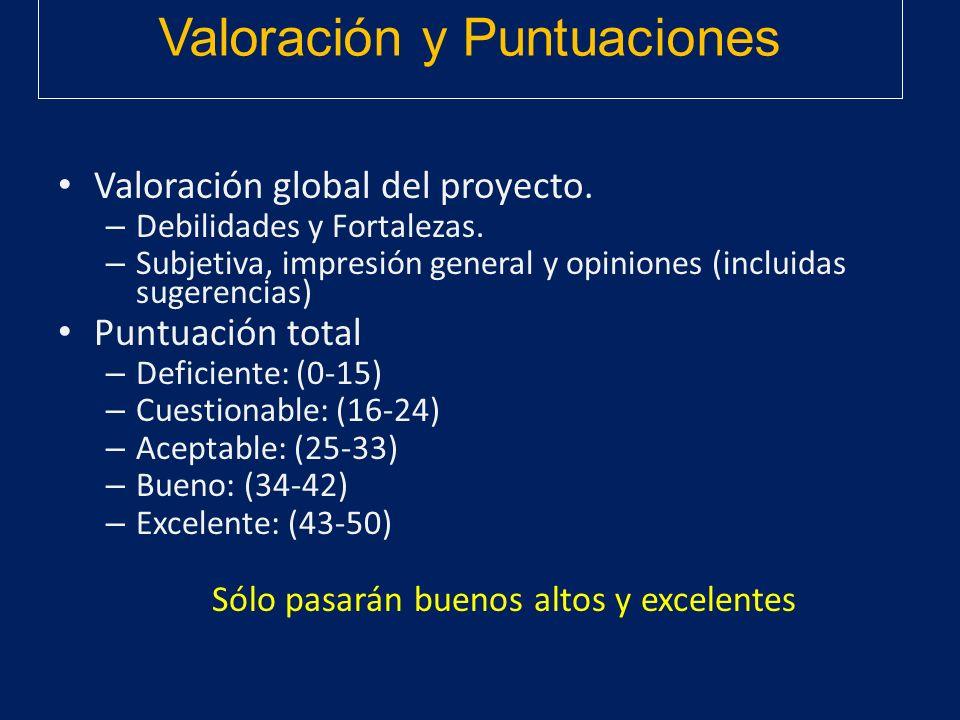 Valoración y Puntuaciones Valoración global del proyecto. – Debilidades y Fortalezas. – Subjetiva, impresión general y opiniones (incluidas sugerencia