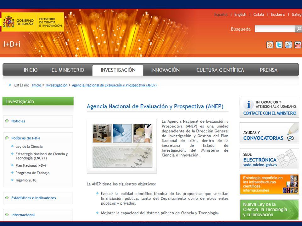 Informes individuales de cada proyecto (mínimo dos), a partir de los cuales el equipo de coordinación elaborará un informe final.