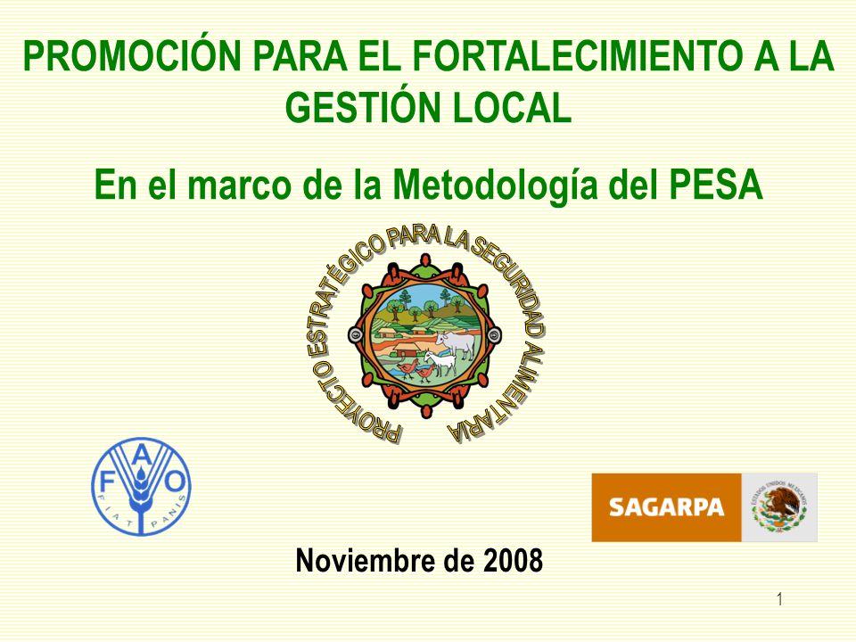 1 PROMOCIÓN PARA EL FORTALECIMIENTO A LA GESTIÓN LOCAL En el marco de la Metodología del PESA Noviembre de 2008