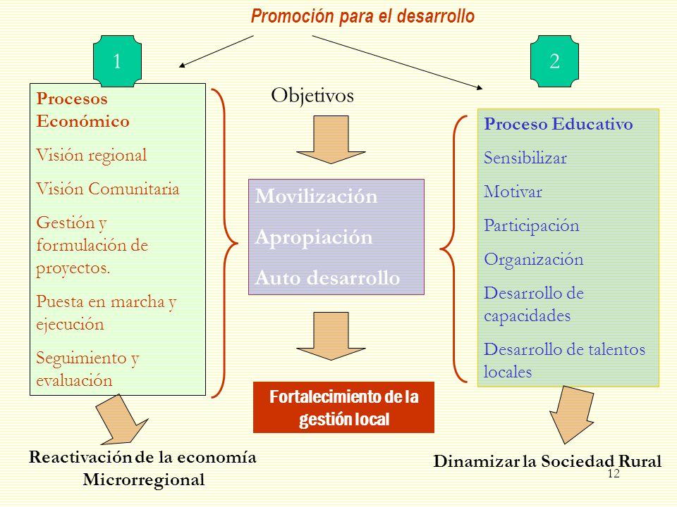 12 Procesos Económico Visión regional Visión Comunitaria Gestión y formulación de proyectos. Puesta en marcha y ejecución Seguimiento y evaluación Mov