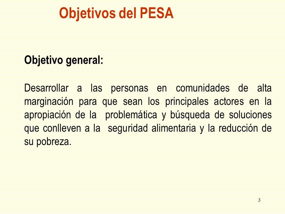 3 Objetivos del PESA Objetivo general: Desarrollar a las personas en comunidades de alta marginación para que sean los principales actores en la aprop