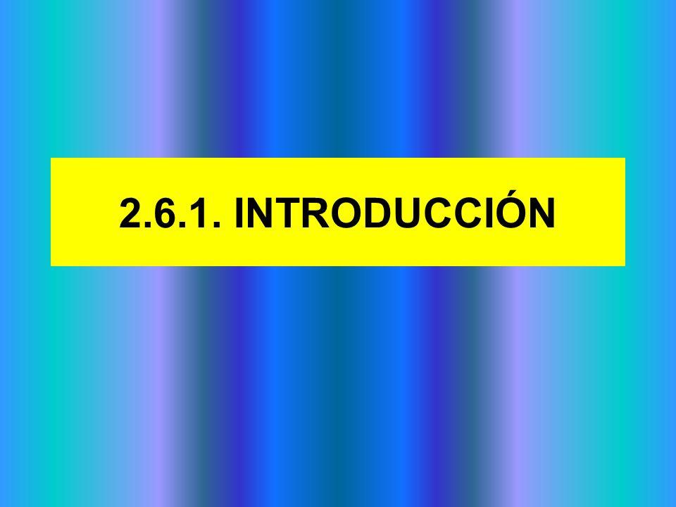 2.6.2.2 SEGMENTACIÓN DEL MERCADO.EL MERCADO OBJETIVO.