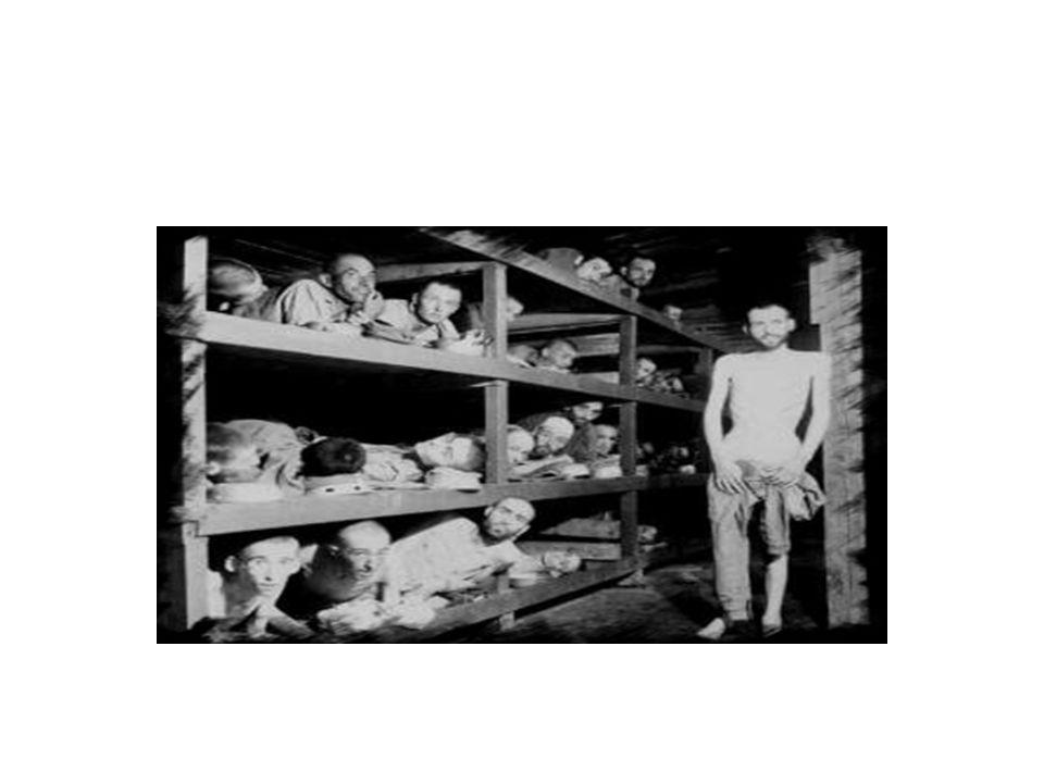 Los Órganos del SIDH La CIDH –Se crea en 1959 e inició labores en 1960 –A partir de 1965 tiene facultades para tramitar peticiones individuales –Es un órgano principal de la OEA (1967) cuya labor es la promoción y defensa de los DDHH La Corte IDH –Los primeros intentos para establecerla datan de 1948 y 1959 –Se crea por la CADH e inició sus funciones en 1979 –Es una institución judicial autónoma cuyo objeto es la aplicación e interpretación de la CADH