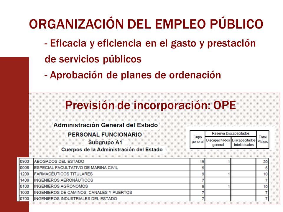 ORGANIZACIÓN DEL EMPLEO PÚBLICO - Eficacia y eficiencia en el gasto y prestación de servicios públicos - Aprobación de planes de ordenación Previsión