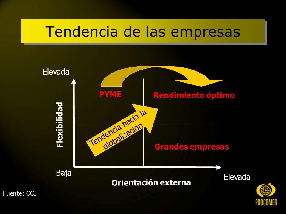 Fuente: CCI PYME Grandes empresas Rendimiento óptimo Flexibilidad Orientación externa Baja Elevada Tendencia hacia la globalización Tendencia de las empresas