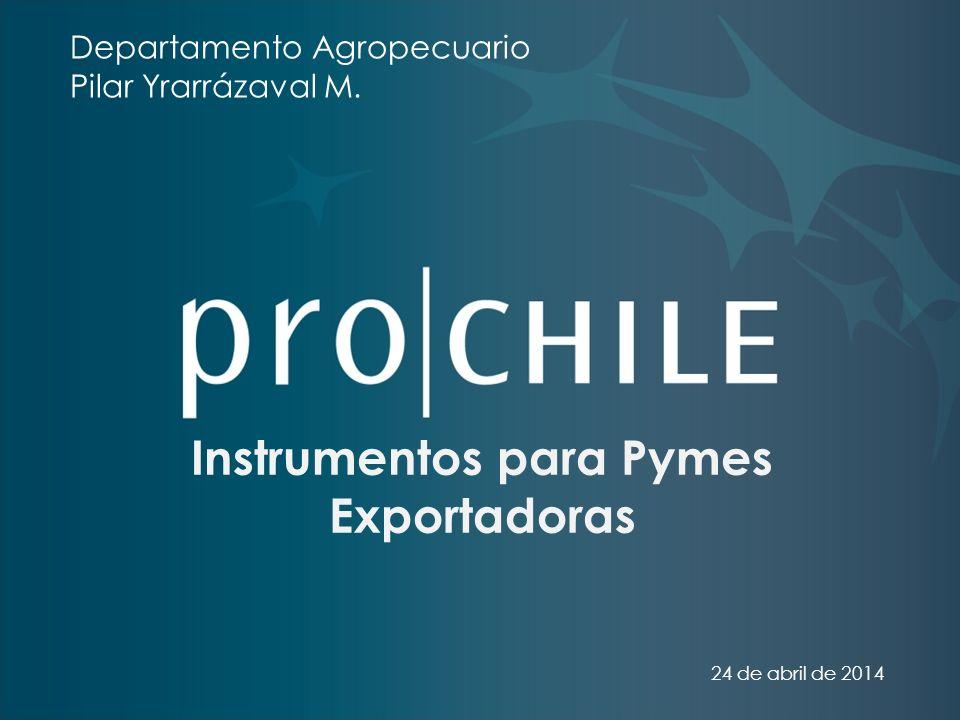 Instrumentos para Pymes Exportadoras 24 de abril de 2014 Departamento Agropecuario Pilar Yrarrázaval M.
