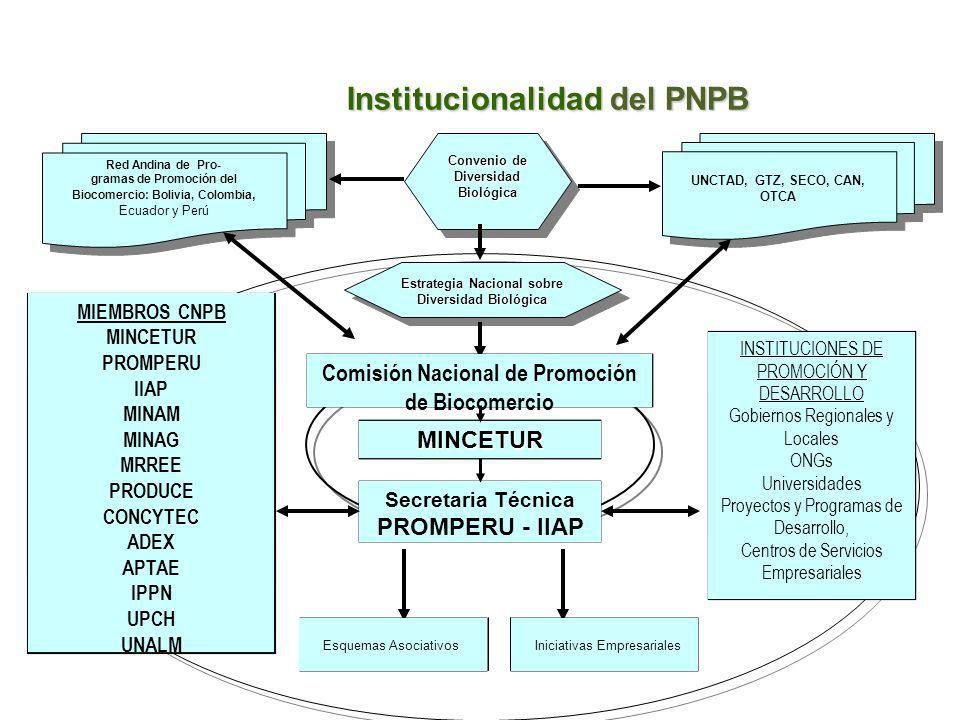 Institucionalidad del PNPB Convenio de Diversidad Biológica UNCTAD, GTZ, SECO, CAN, OTCA Estrategia Nacional sobre Diversidad Biológica Red Andina de