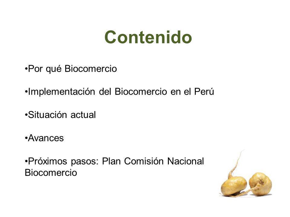 Contenido Por qué Biocomercio Implementación del Biocomercio en el Perú Situación actual Avances Próximos pasos: Plan Comisión Nacional Biocomercio