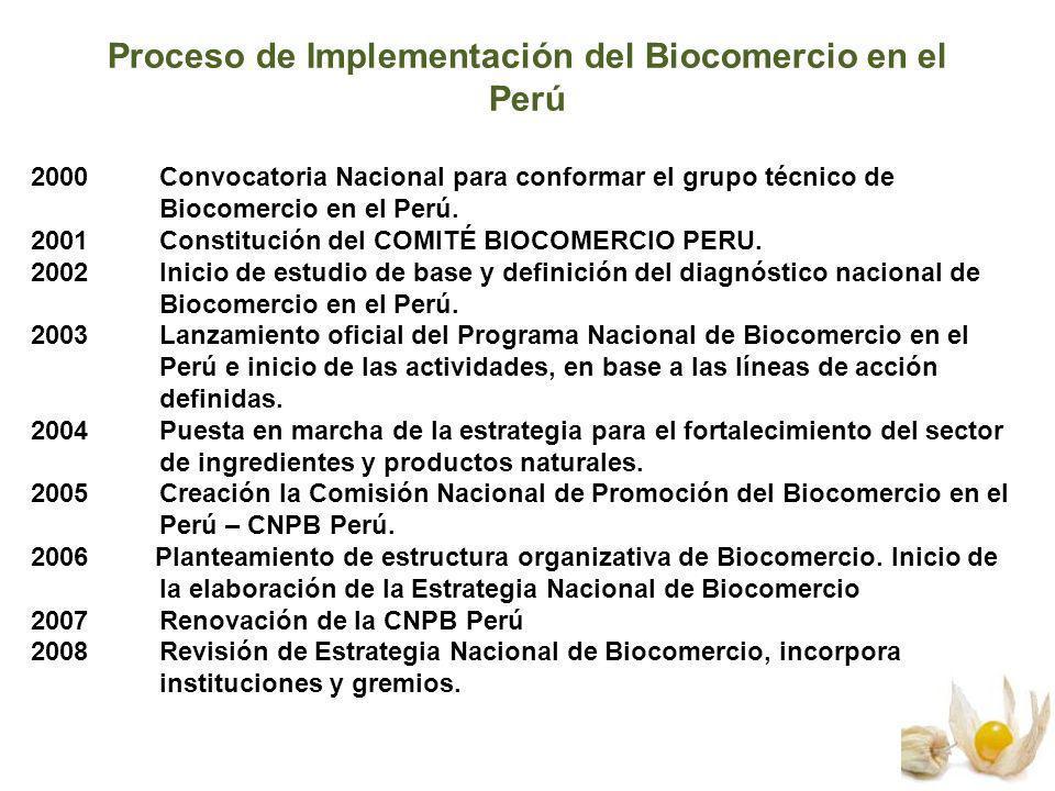 Proceso de Implementación del Biocomercio en el Perú 2000 Convocatoria Nacional para conformar el grupo técnico de Biocomercio en el Perú. 2001 Consti