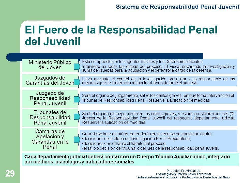 29 El Fuero de la Responsabilidad Penal del Juvenil Sistema de Responsabilidad Penal Juvenil Dirección Provincial de Estrategias de Intervención Territorial Subsecretaría de Promoción y Protección de Derechos del Niño Está compuesto por los agentes fiscales y los Defensores oficiales.