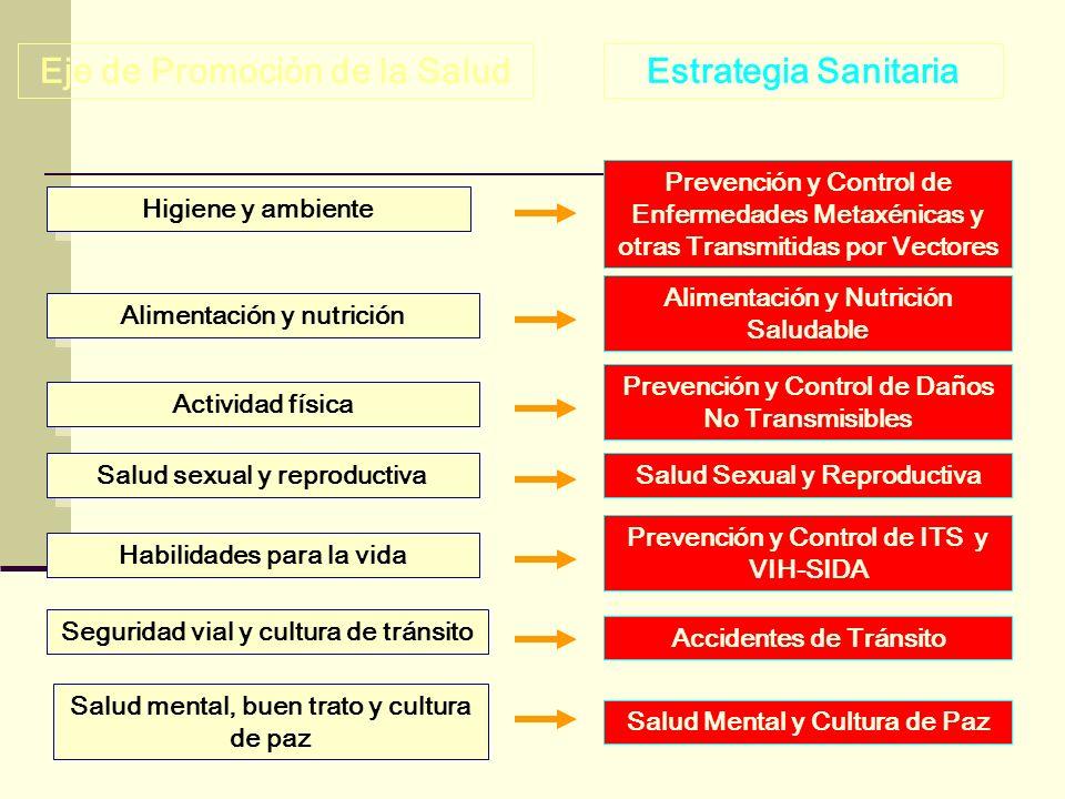 Prevención y Control de Enfermedades Metaxénicas y otras Transmitidas por Vectores Alimentación y Nutrición Saludable Accidentes de Tránsito Prevenció
