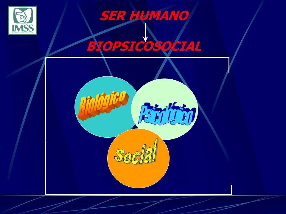 Recursos filosóficos Recursos científicos Persona con limitaciones formada integralmente y su familia Recursos humanos Recursos materiales Contexto socioeconómico Subsistemas y variables internas Insumos Recursos Situación del mercado de trabajo Variables externas