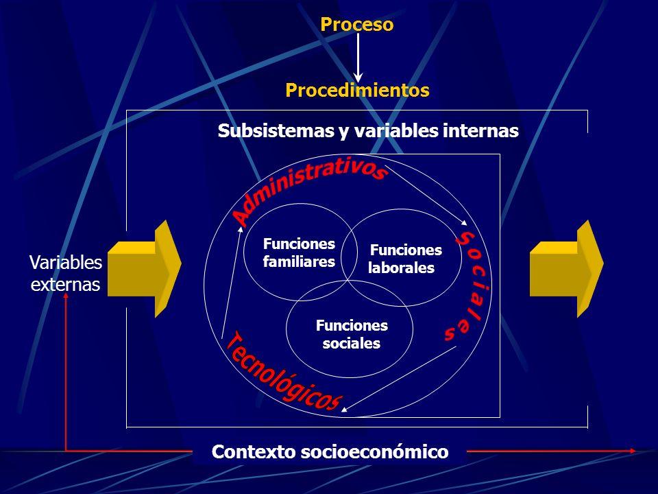 Funciones familiares Funciones laborales Funciones sociales Contexto socioeconómico Subsistemas y variables internas Proceso Procedimientos Variables externas