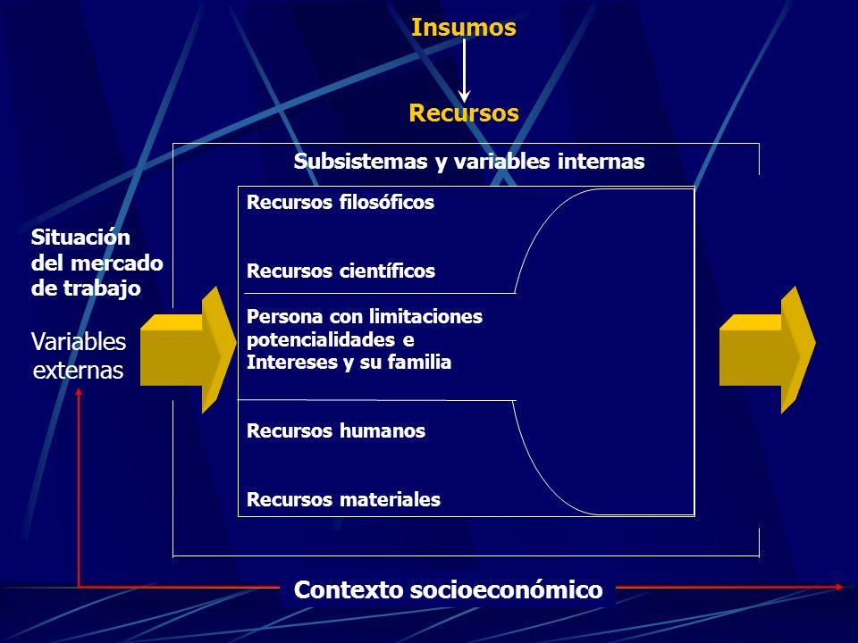 Recursos filosóficos Recursos científicos Persona con limitaciones potencialidades e Intereses y su familia Recursos humanos Recursos materiales Contexto socioeconómico Subsistemas y variables internas Insumos Recursos Situación del mercado de trabajo Variables externas