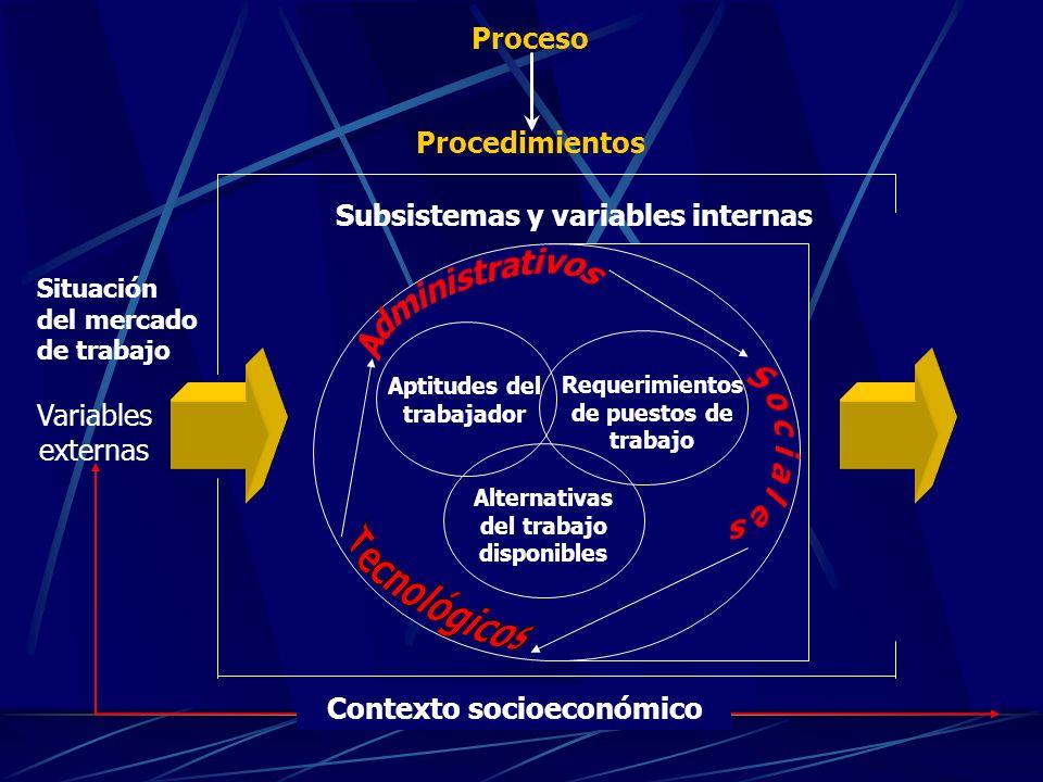 Aptitudes del trabajador Requerimientos de puestos de trabajo Alternativas del trabajo disponibles Contexto socioeconómico Subsistemas y variables internas Proceso Procedimientos Variables externas Situación del mercado de trabajo