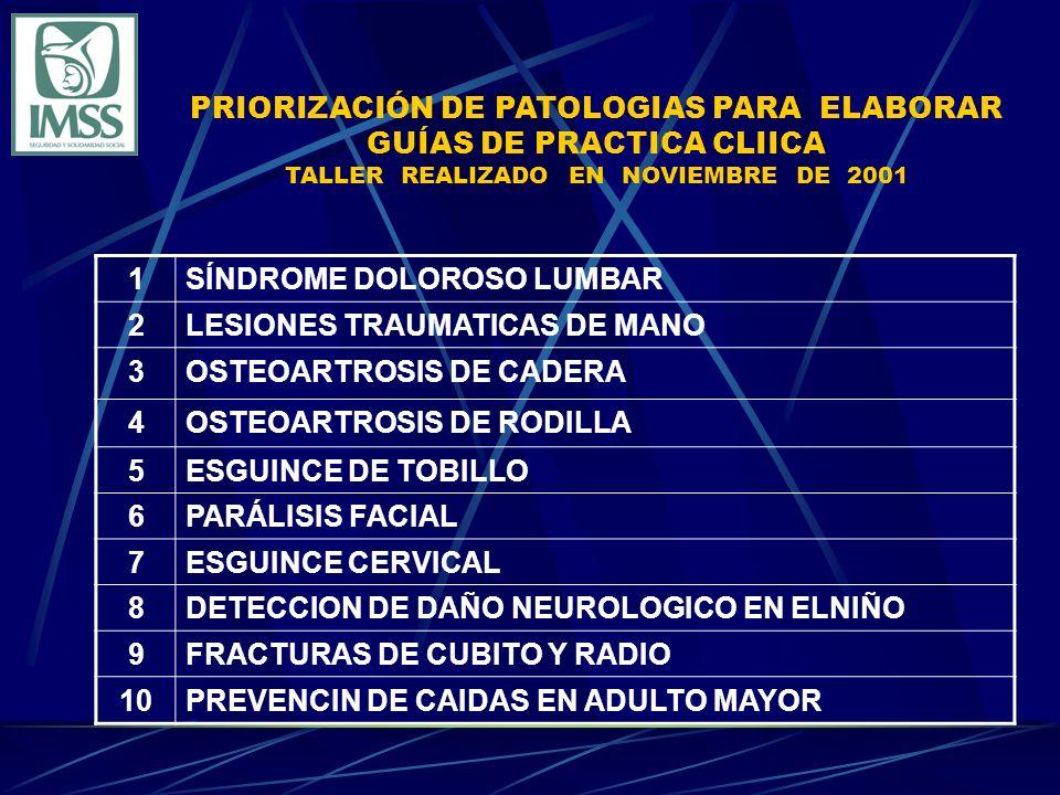 PRIORIZACIÓN DE PATOLOGIAS PARA ELABORAR GUÍAS DE PRACTICA CLIICA TALLER REALIZADO EN NOVIEMBRE DE 2001 1SÍNDROME DOLOROSO LUMBAR 2LESIONES TRAUMATICAS DE MANO 3OSTEOARTROSIS DE CADERA 4OSTEOARTROSIS DE RODILLA 5ESGUINCE DE TOBILLO 6PARÁLISIS FACIAL 7ESGUINCE CERVICAL 8DETECCION DE DAÑO NEUROLOGICO EN ELNIÑO 9FRACTURAS DE CUBITO Y RADIO 10PREVENCIN DE CAIDAS EN ADULTO MAYOR