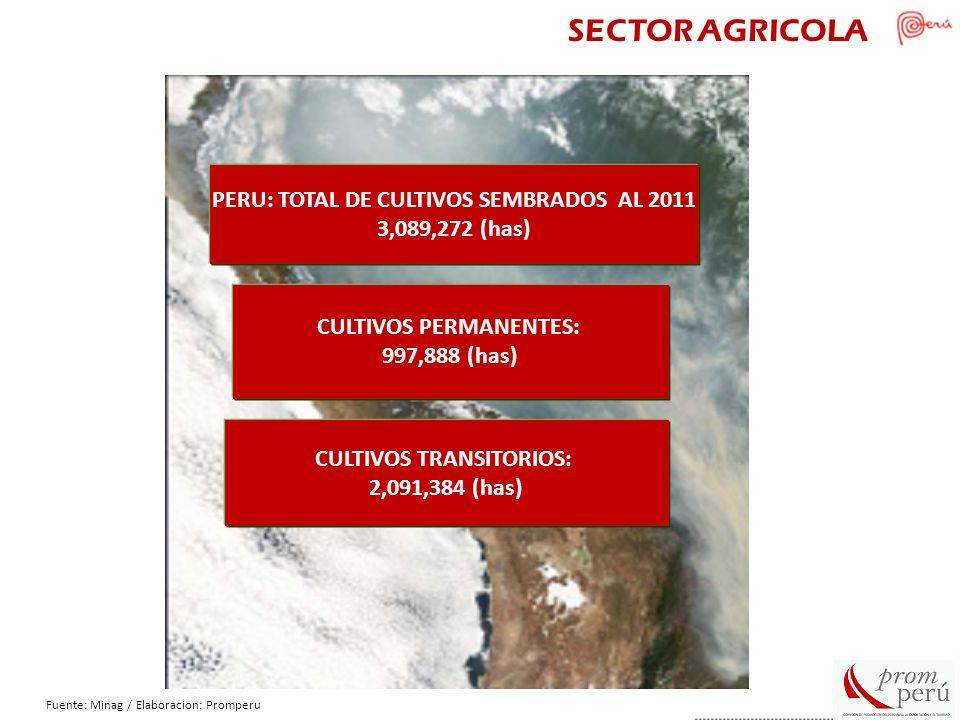 SECTOR AGRICOLA PERU: TOTAL DE CULTIVOS SEMBRADOS AL 2011 3,089,272 (has) CULTIVOS PERMANENTES: 997,888 (has) CULTIVOS TRANSITORIOS: 2,091,384 (has) F
