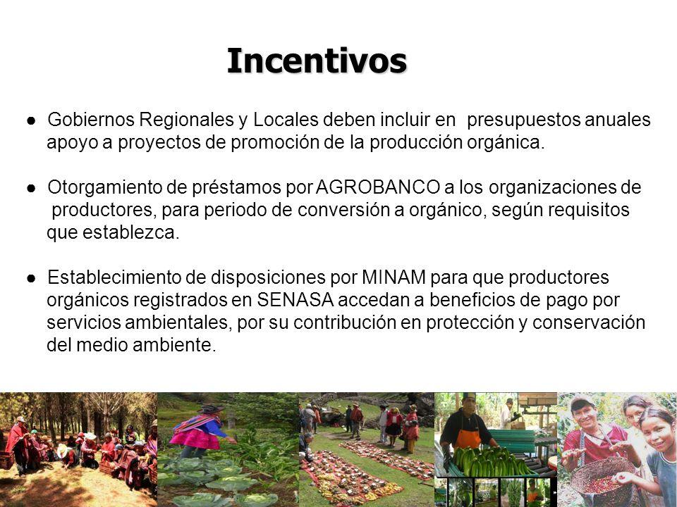 Gobiernos Regionales y Locales deben incluir en presupuestos anuales apoyo a proyectos de promoción de la producción orgánica.