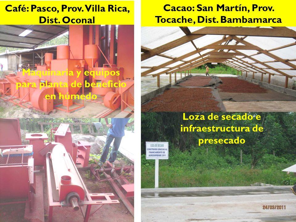Café: Pasco, Prov.Villa Rica, Dist. Oconal Cacao: San Martín, Prov.