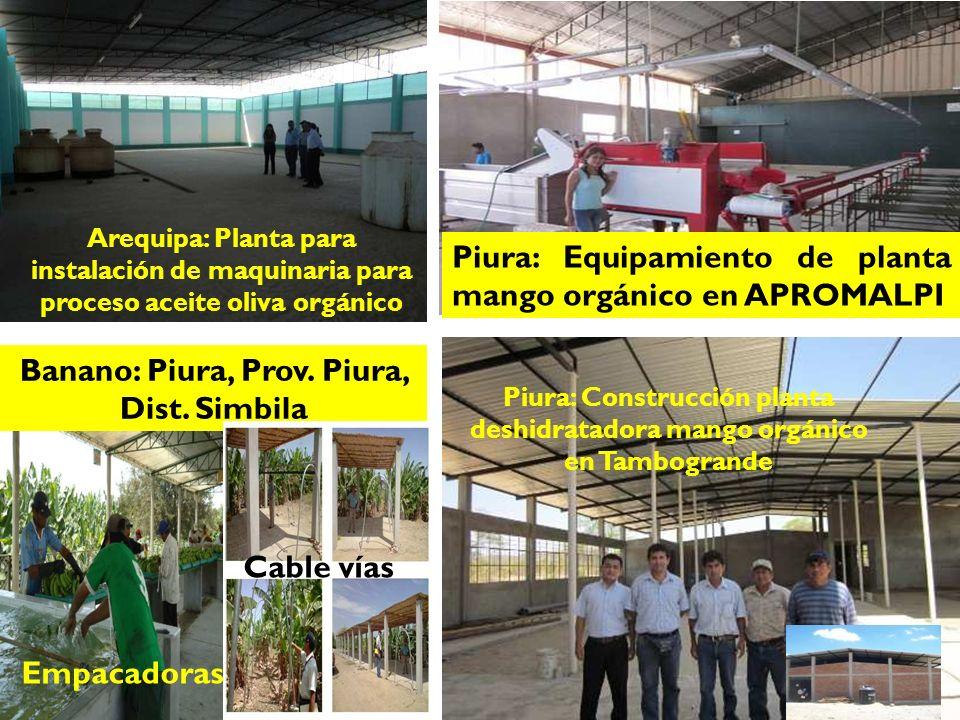 Piura: Construcción planta deshidratadora mango orgánico en Tambogrande Piura: Equipamiento de planta mango orgánico en APROMALPI Empacadoras Banano: Piura, Prov.