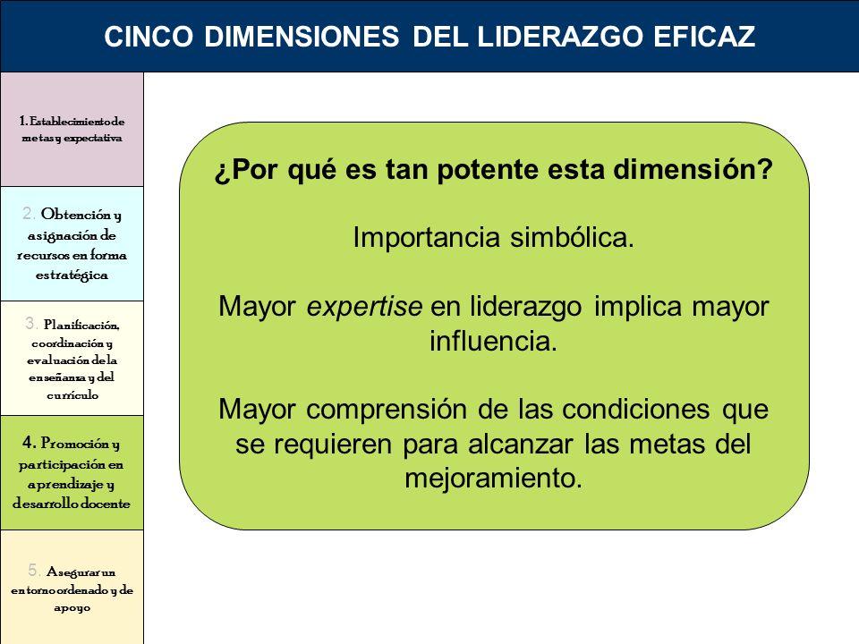 1. Establecimiento de metas y expectativa 2. Obtención y asignación de recursos en forma estratégica 3. Planificación, coordinación y evaluación de la