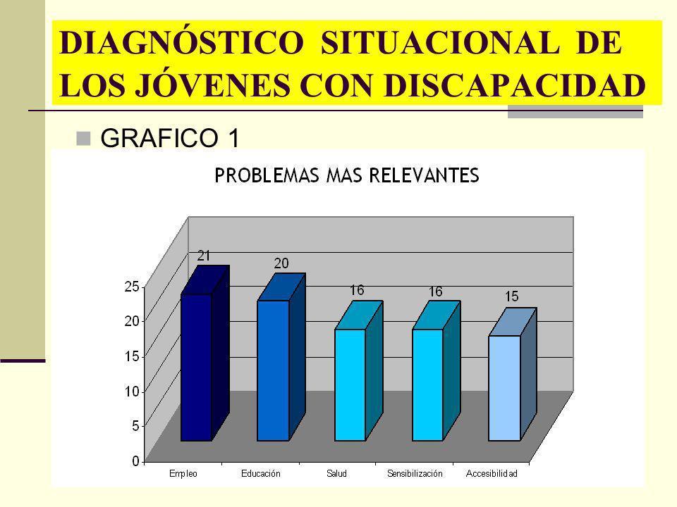 DIAGNÓSTICO SITUACIONAL DE LOS JÓVENES CON DISCAPACIDAD GRAFICO 1