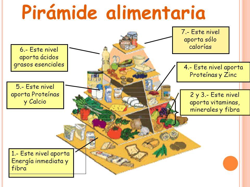 1.- Este nivel aporta Energía inmediata y fibra 2 y 3.- Este nivel aporta vitaminas, minerales y fibra 5.- Este nivel aporta Proteínas y Calcio 4.- Es