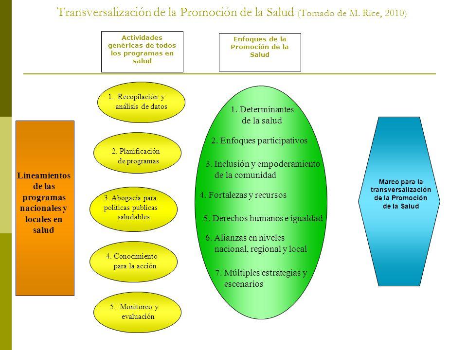 Perspectiva Latinoamericana de Competencias Profesionales en Promoción de la Salud (CIUEPS 2) Las áreas de competencia de destrezas: Estimación de necesidades individuales y comunitarias Identificación de los condicionantes y los determinantes de la salud Articulación de los esfuerzos con las áreas prioritarias de salud Planificación y consultoría Desarrollo de alianzas/trabajo colaborativo Formulación de políticas públicas saludables Desarrollo de trabajo con la comunidad (apoderamiento/ participación comunitaria) Implantación de programas, estrategias e intervenciones Administración y organización Evaluación e investigación
