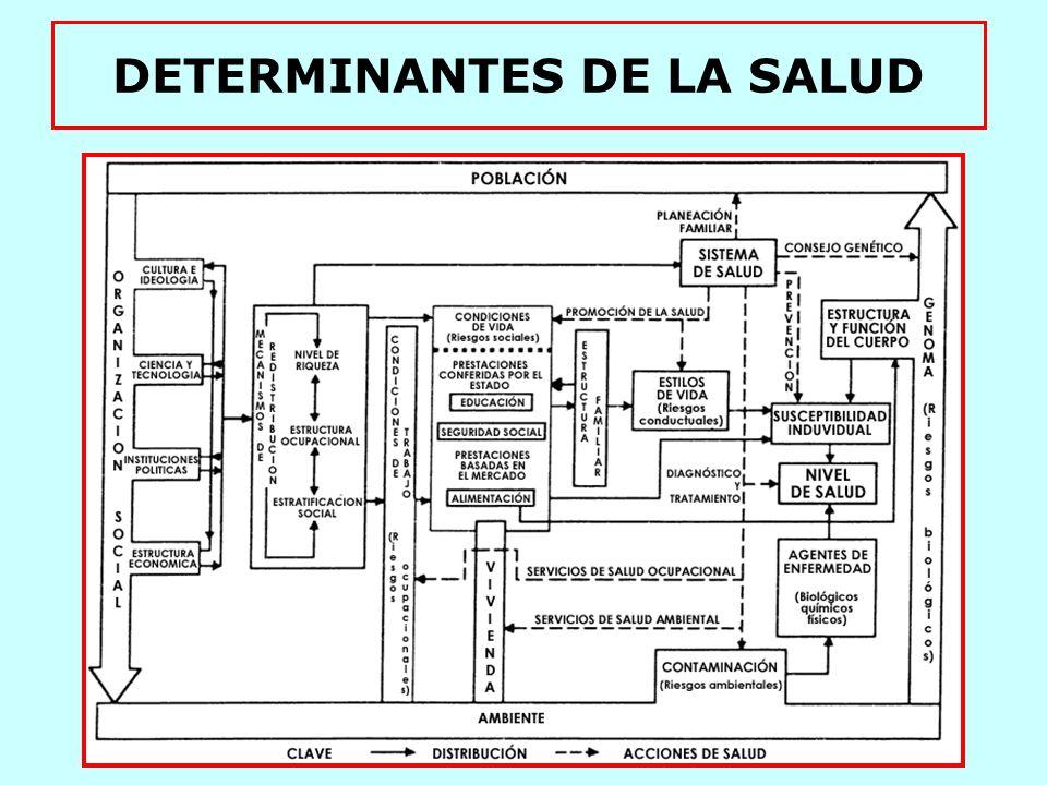 DETERMINACIÓN DE LA SALUD DETERMINANTES BÁSICOS POBLACIÓN AMBIENTE GENOMA ORGANIZACIÓN SOCIAL DETERMINANTES ESTRUCTURALES NIVEL DE RIQUEZA ESTRUCT.