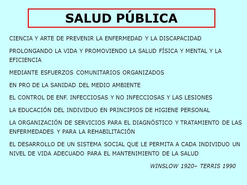 1.PÚBLICA: Acción gubernamental – SECTOR PÚBLICO 2.PÚBLICA: Participación de la comunidad organizada El Público 3.PÚBLICA: Servicios no personales de salud Saneam.