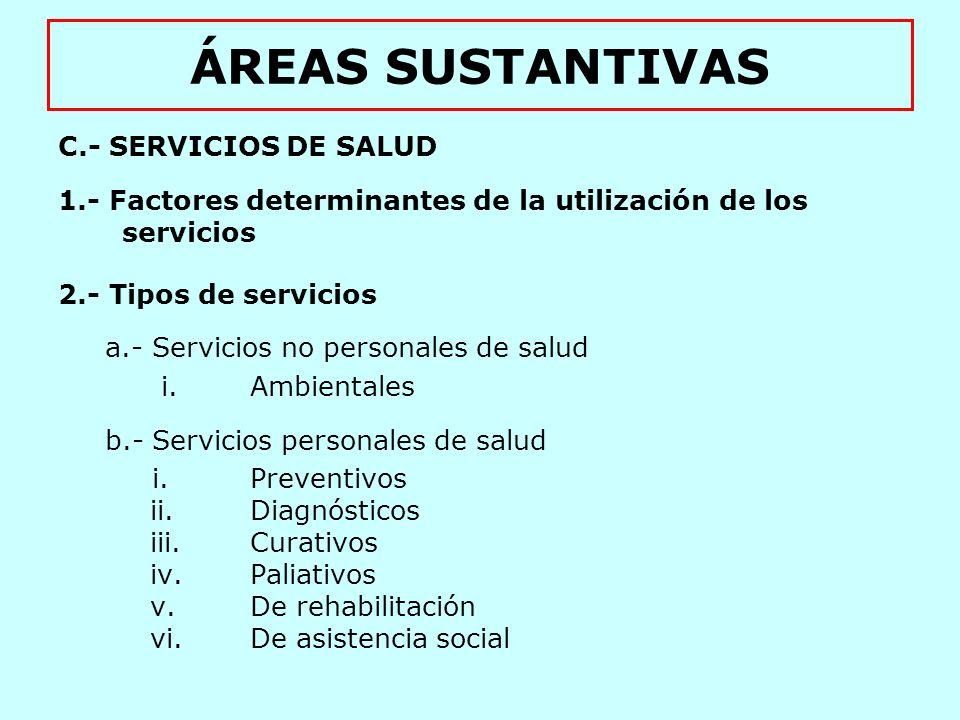 ÁREAS SUSTANTIVAS D.- FACTORES MEDIADORES ENTRE SERVICIOS Y RECURSOS 1.- Productividad 2.- Accesibilidad