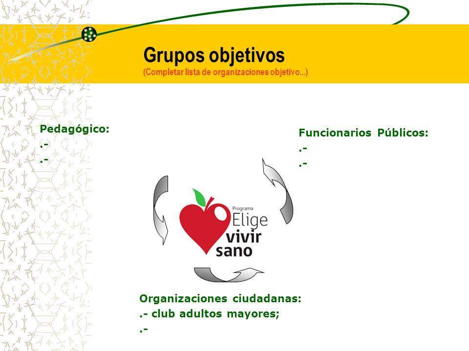 Grupos objetivos (Completar lista de organizaciones objetivo...) Funcionarios Públicos:.- Organizaciones ciudadanas:.- club adultos mayores;.- Pedagógico:.-